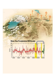 Water Year Precipitation
